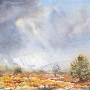 Stoney Moor