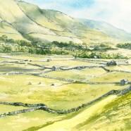 Swaledale Pastures