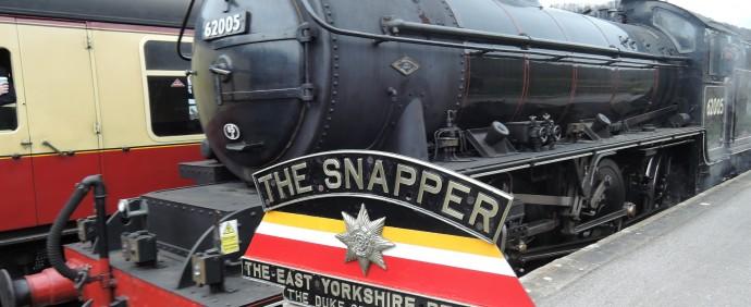 Snapper 1121